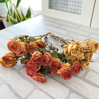 ドライフラワー花材 スプレーバラ&一輪バラ(ドライフラワー)