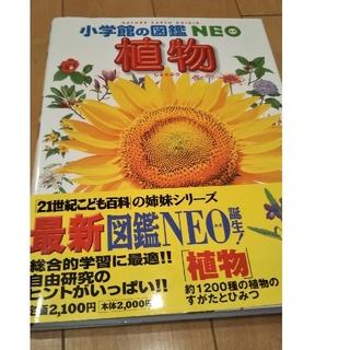 ショウガクカン(小学館)の植物 2版  小学館の図鑑 NEO(絵本/児童書)