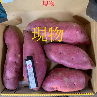 サツマイモ(野菜)