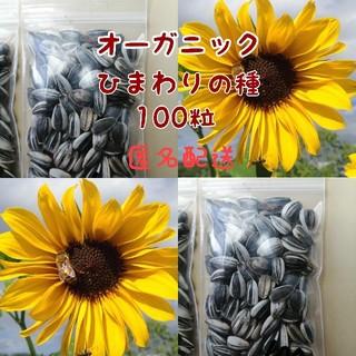 【匿名配送・令和2年収穫・自然農】畑でそだったひまわりの種 100粒(その他)