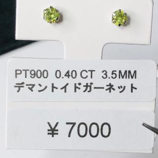 CE-51770 PT900 ピアス デマントイドガーネット AANI アニ