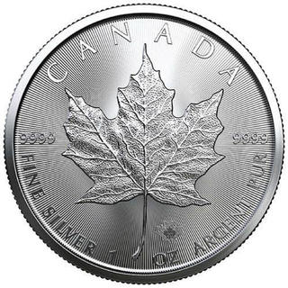 2020年 (新品) 31.1g カナダ メイプルリーフ 純銀 コインケース付き