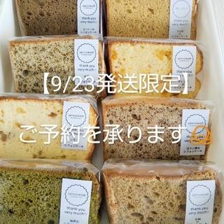 【9/23発送限定】cutシフォン