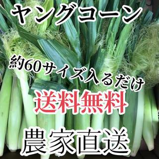 ナガマツ様専用品割引2箱(野菜)