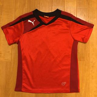 PUMA - PUMA プーマ Tシャツ 120センチ