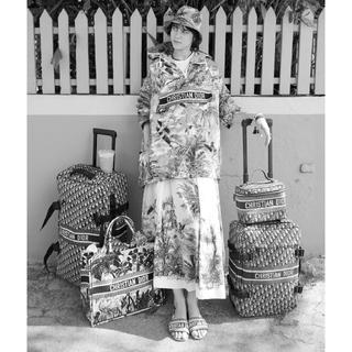 ディオール(Dior)のDIOR バニティケース 新作 バック(ハンドバッグ)