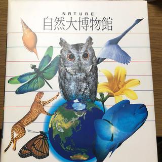 ショウガクカン(小学館)の小学館 自然大博物館(絵本/児童書)