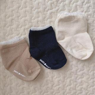 petit main - 靴下(3足セット)