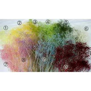 かすみ草ラベンダー&水色&レッド 3色(ドライフラワー)