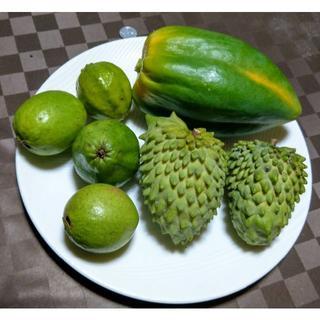 沖縄本島産 お買得!旬のもぎたてフルーツセット♪(フルーツ)