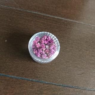 かすみ草 ドライフラワー 紫 封入素材(ドライフラワー)
