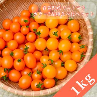 ミニトマト【農学博士のDr.トマト 1Kg】☘️〜青森津軽産〜(野菜)