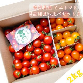 ミニトマト【農学博士のDr.トマト 2Kg】☘️〜青森津軽産〜(野菜)