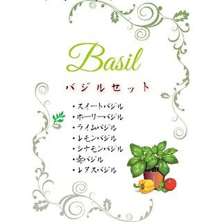 バジルセット 固定種 有機種子 野菜の種 ハーブの種 家庭菜園 水耕栽培(野菜)