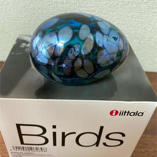 イッタラ(iittala)のscope birds egg turquoise luster(その他)