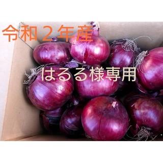 北海道産赤玉葱10㎏在庫わずか(野菜)