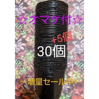 ~増量セール~黒色ポリポット35個❬6cm❭☆植物の苗のオマケ付☆(その他)