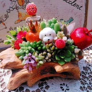 多肉植物の寄せ植え♬切り株♬トイプードルちゃん付き~♡(その他)