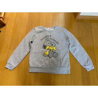 スヌーピー(SNOOPY)のSNOOPY トレーナー(Tシャツ/カットソー)