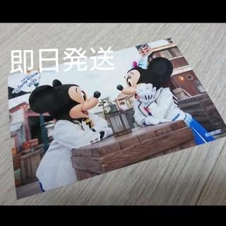 【最新版】ディズニー シースペシャルフォト 2020年9月~