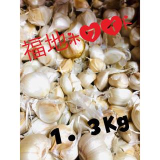 青森県産 にんにく 1.3キロ 福地ホワイト 何でも詰め合わせ(野菜)
