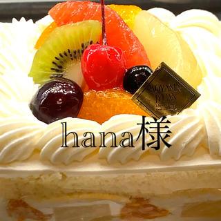 hana様セレクト(その他)
