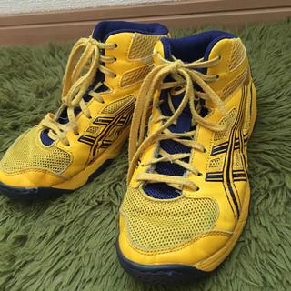 アシックス(asics)のasics アシックス 21.5 スニーカー 黄色(スニーカー)