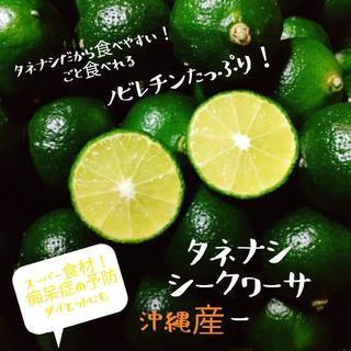 スーパー食材!シークワーサー【種無し!無農薬】  コンパクトでお届け!(フルーツ)