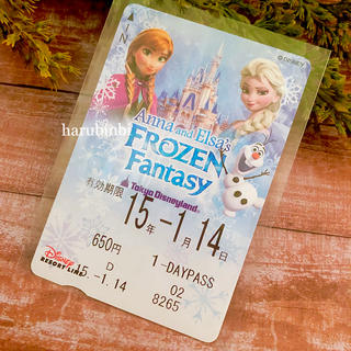 ディズニー(Disney)のフロファン フリーきっぷ アナと雪の女王 フリー切符 一日乗車券(その他)