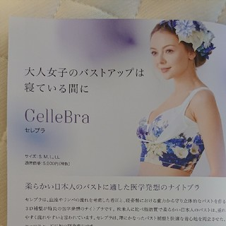 CelleBra(セレブラ)LLラベンダー(ブラ)