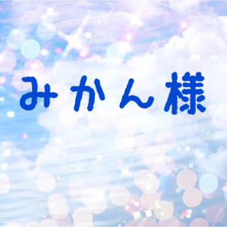 ヴィス(ViS)のみかんちゃん専用(Tシャツ(長袖/七分))