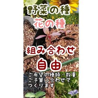 お得種セット(ガーデニング・プランター栽培・家庭菜園に)(オーダーメイド)