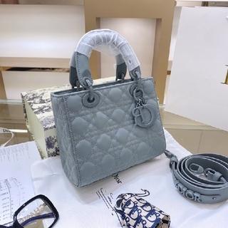 ディオール(Dior)の新品  Dior  ディオール ハンドバッグ (ハンドバッグ)