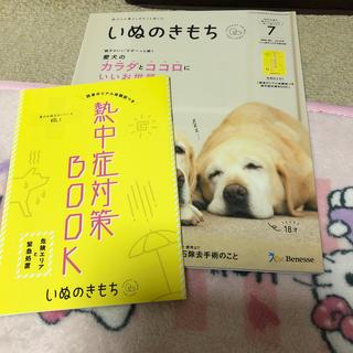 いぬの気持ち7月号☆(犬)