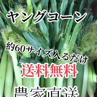 幸様専用(野菜)