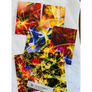 ポーラ(POLA)のポーラ ポストカード BA 6枚セット(アート/写真)