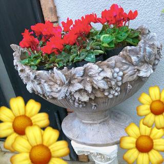 多肉季節のお花にオシャレな❤️大型ファイバーグレイ葡萄プランター(プランター)