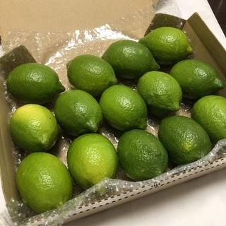 グリーンレモン 和歌山県産