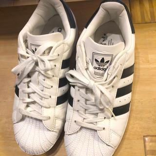 adidas - adidas スーパースター 24.5cm