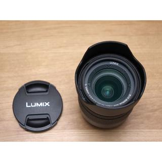 Panasonic - LUMIX G VARIO 12-60mm / F3.5-5.6