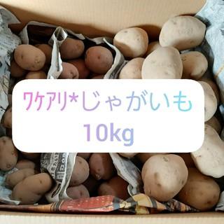 わけあり*じゃがいも 10kg(野菜)