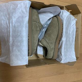 UGG - UGG classic slipper(24cm) フレームワーク購入 未使用品