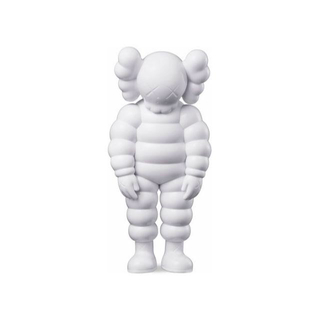 KAWS  What Party White(その他)