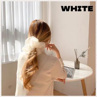 ディーホリック(dholic)の新色 即購入可⭐️オーガンジーシュシュ★ビッグ シュシュ★韓国♥ホワイト(ヘアゴム/シュシュ)