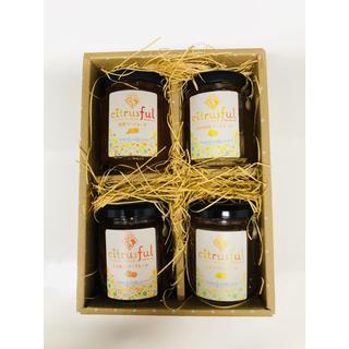 マーマレードジャム 4個セット 愛媛県産柑橘使用(最終価格)(缶詰/瓶詰)