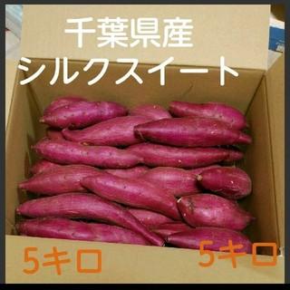 千葉県産 サツマイモ さつまいも シルクスイート 5キロ(野菜)