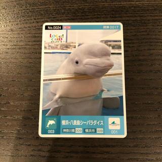 ロゲットカード【新品】八景島シーパラダイス 八景島 神奈川 横浜 0024 24(カード)