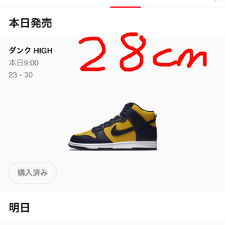 NIKE - NIKE dunk high MICHIGAN    28センチ