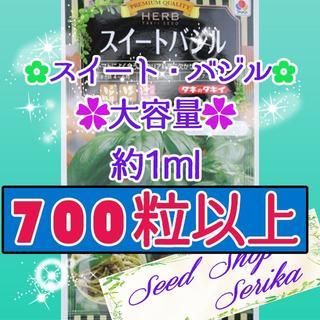 スイートバジル大容量1ml 家庭菜園 野菜 ハーブ 種(その他)