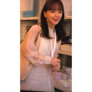 SANYO - 新品未開封☆私の家政婦なぎささんシースルードレス